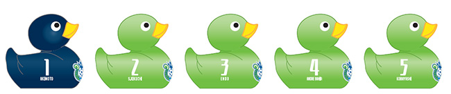 duck_0724