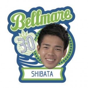 30_shibata