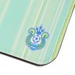 m_passport_case_stripe_light_green_03