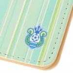 passport_case_stripe_light_green_03