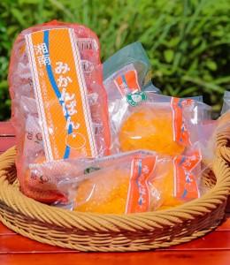 35_sunmesseshinwa_mikanpan