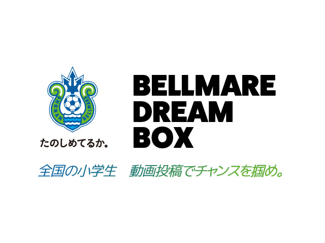 bellmare_dream_box_slide_3_d_3